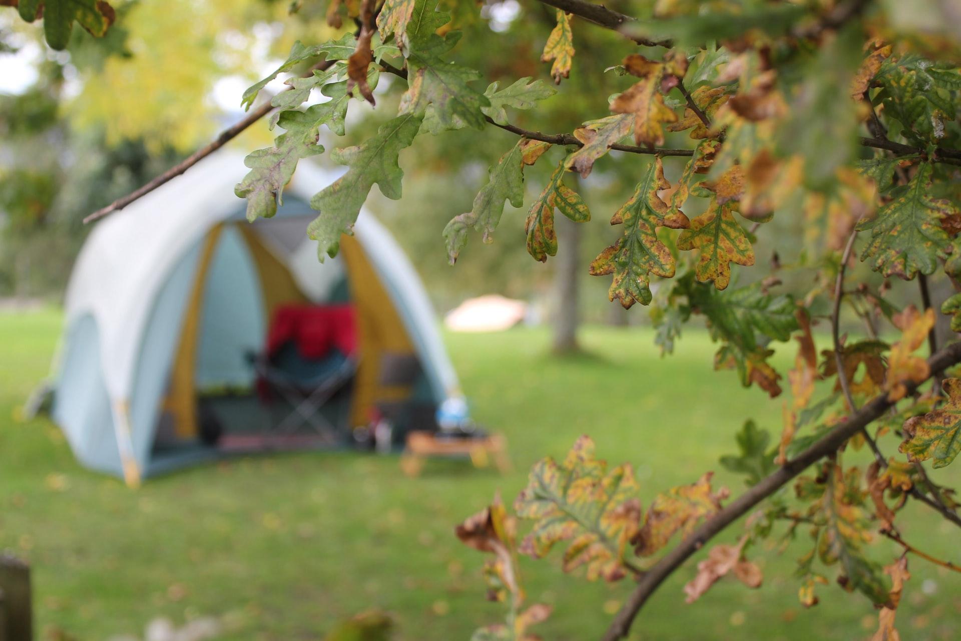 群馬 家族キャンプ スウィートグラス